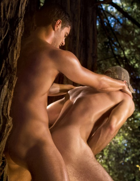 Falcon Studios: Unleashing a Wild Urge in the Woods